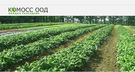 Комосс - овощен разсадник