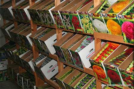 Сортови семена и растителна защита ЕООД