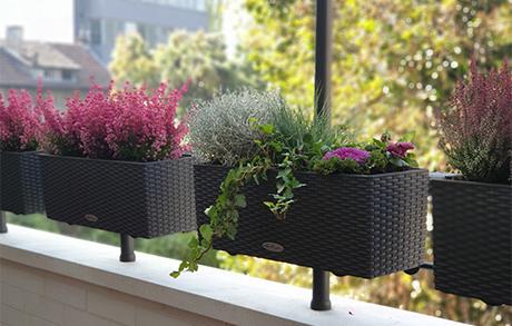 Ню Гарден - озеленяване на балкони