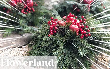 Магазин за цветя - Flowerland