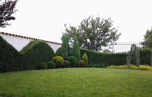 Озеленяване - Green Gardens, град Пловдив