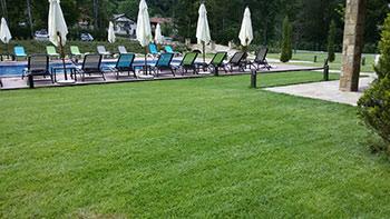 Озеленяване на хотели