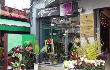 Цветарски магазин Орхидея