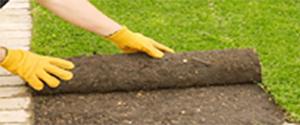 Оформяне на двора и изграждане на моравата