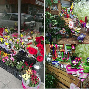 Цветарски магазин - Хоум & Гарден, Пловдив