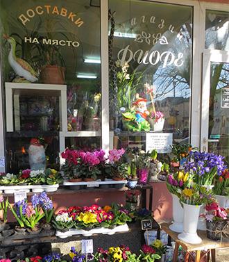 Магазин за цветя Фиоре, София
