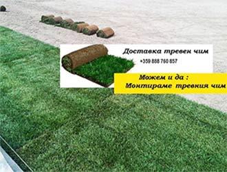 тревни чимове