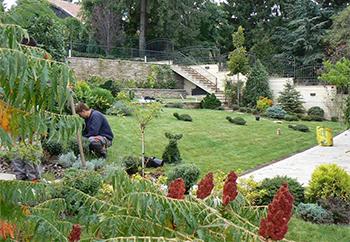 Външно озеленяване - Фито Дизайн