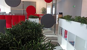 Озеленяване на офиси