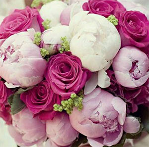 Английски рози