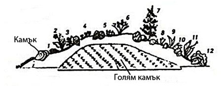 Примерен план на алпинеум