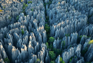 Каменната гора Лунан в Южен Китай