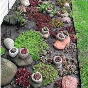 каменна градина-леха