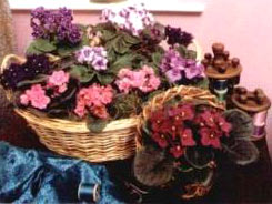 Кошница за цветя