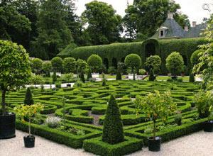 Градински лабиринт