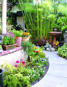 Организирана градина