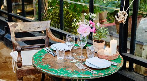 Храна за растения и цветя