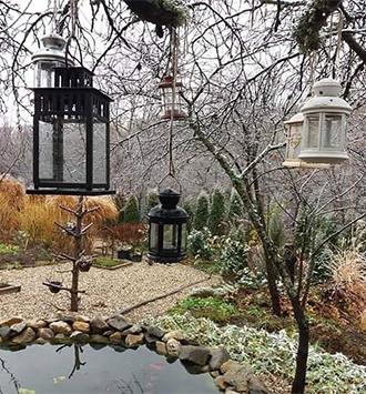 Ботаническа градина Борика, езерце