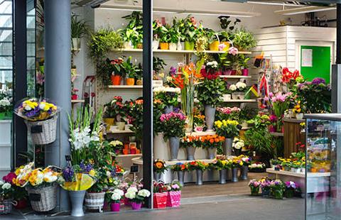 Магазин за цветя Стрелиция Варна